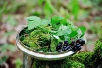 Víčko jako miska na ingredience lesního čaje