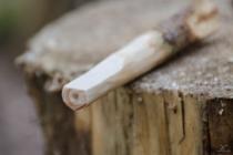 Na ořezaném konci borovice jsem vytvořil plošku.